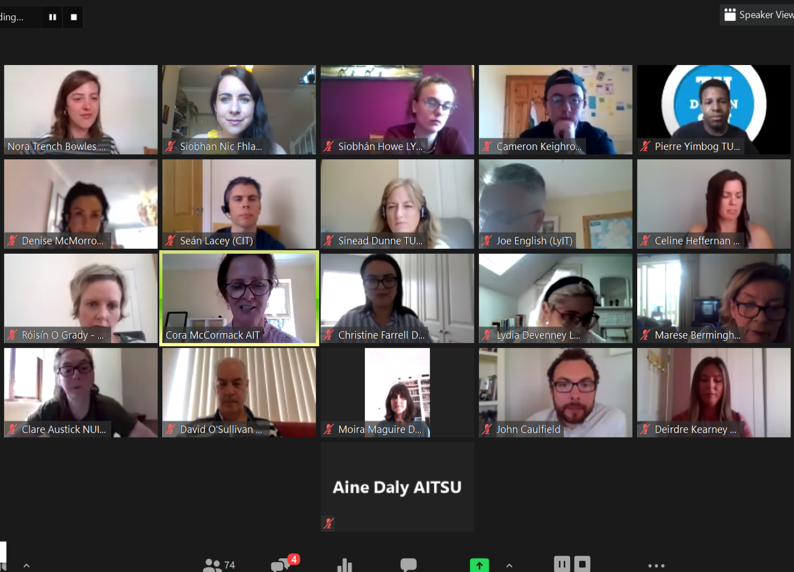 Screenshot of all panelists at Practitioners Forum 2020 Webinar 1