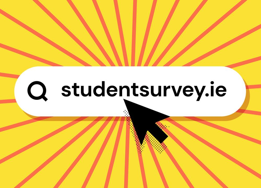 StudentSurvey.ie in 60 seconds